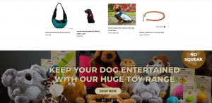 Shopify Website Examples